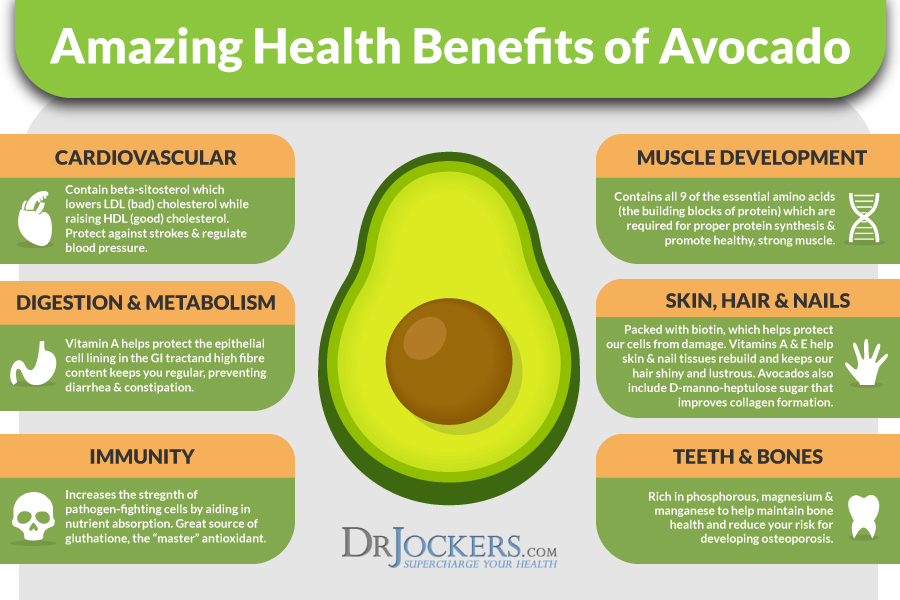 My 8 Favorite Ketogenic Avocado Recipes - DrJockers.com