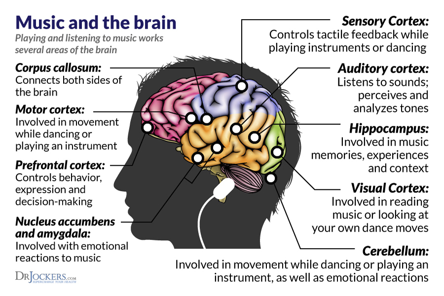 how music influences memory The american music therapy association (amta) reports that music therapy programs can be designed to achieve goals such as managing stress, enhancing memory, and alleviating pain.