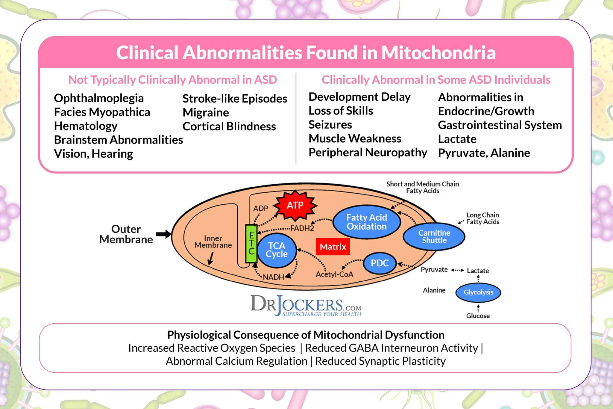 Mitochondrial Dysfunction and Chronic Disease