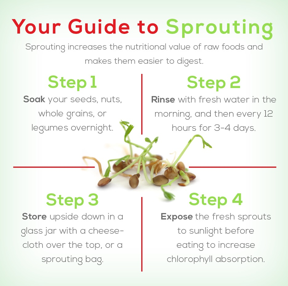 Nutritional-changes-while-sprouting-process