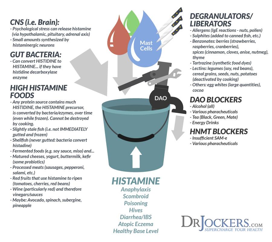 Are You Suffering From Histamine Intolerance DrJockers com
