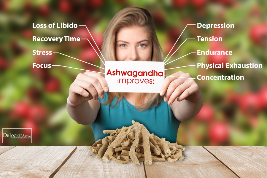 3 Life Changing Health Benefits Of Ashwagandha Drjockers Com