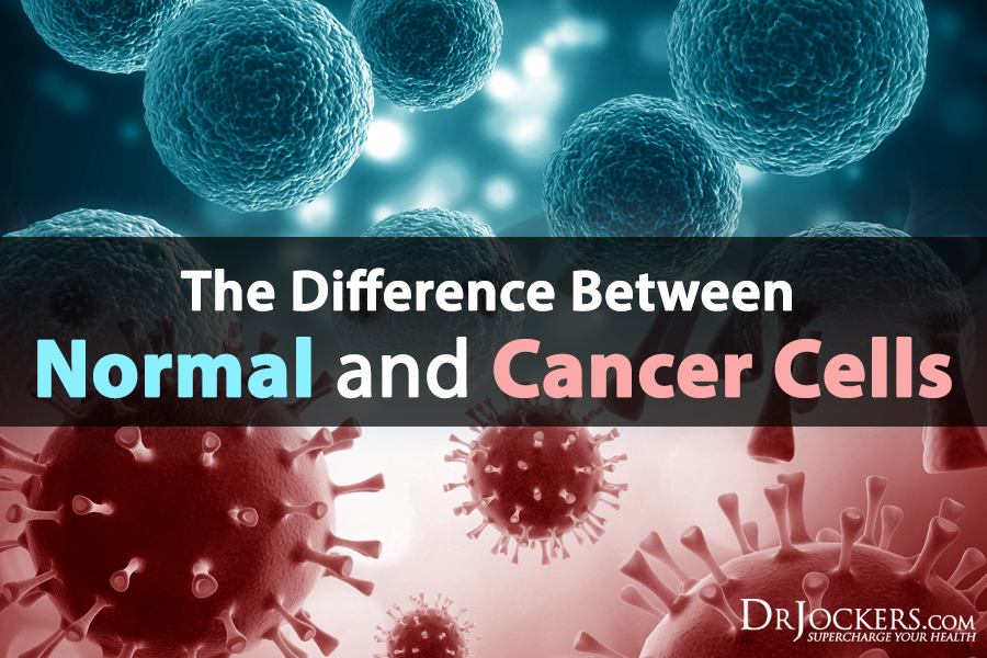 The Difference Between Normal and Cancer Cells - DrJockers.com