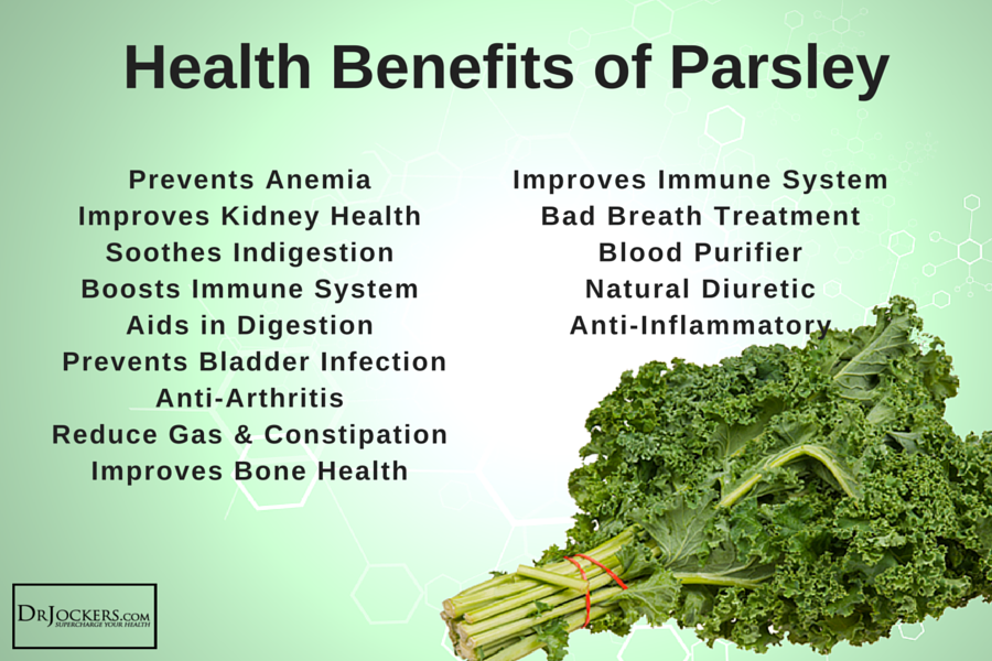 Health Benefits Of Parsley2 Drjockers Com