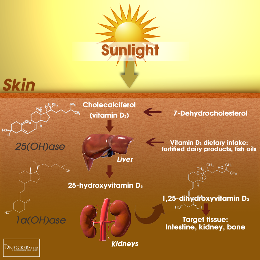 healthy sun, Healthy Sun Leads to Healthy Skin