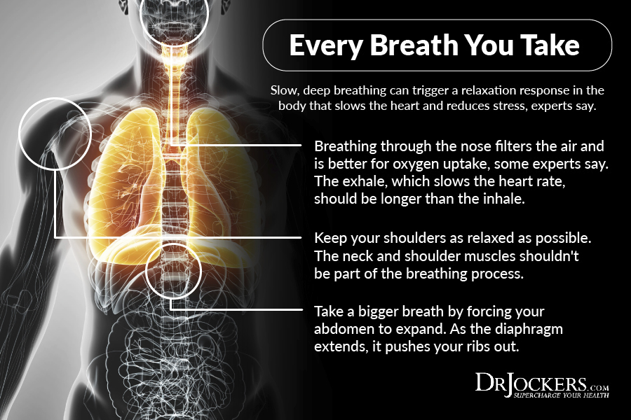 breathing, The Revitalizing Power of Breathing