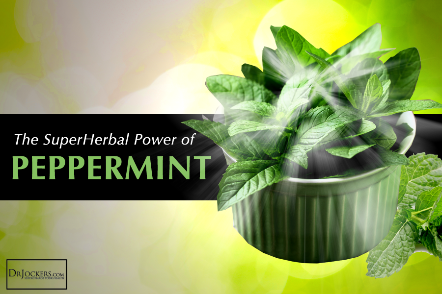 peppermint, 5 Ways Peppermint Can Be Used As Medicine