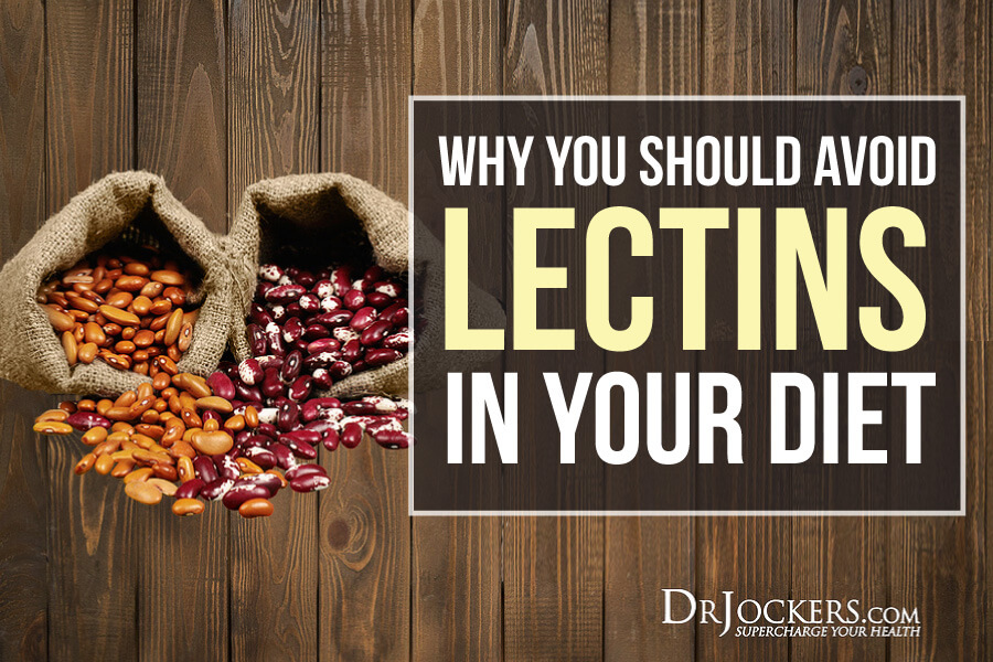 Lectins, Why You Should Avoid Lectins in Your Diet!