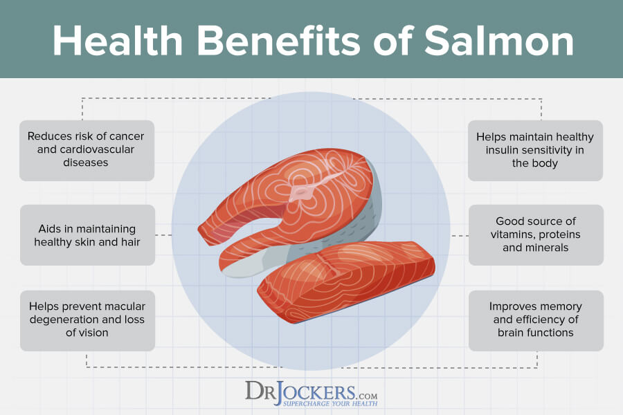 eating salmon, 9 Health Benefits of Eating Salmon For Your Brain and Body