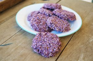 coconut flake cookies, Blueberry Coconut Flake Cookies