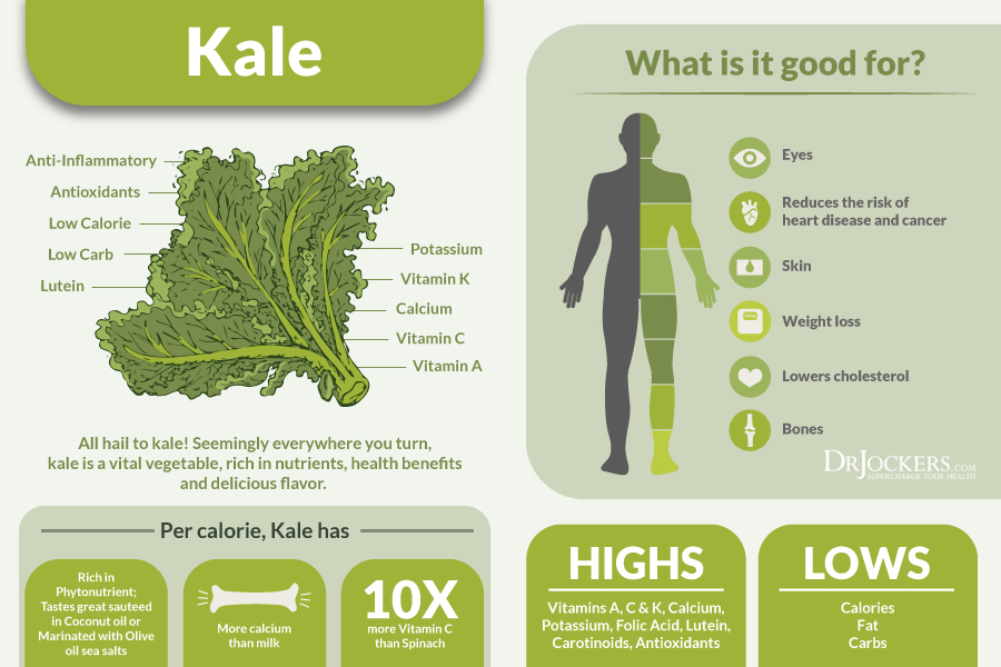 kale, 6 Incredible Health Benefits of Kale