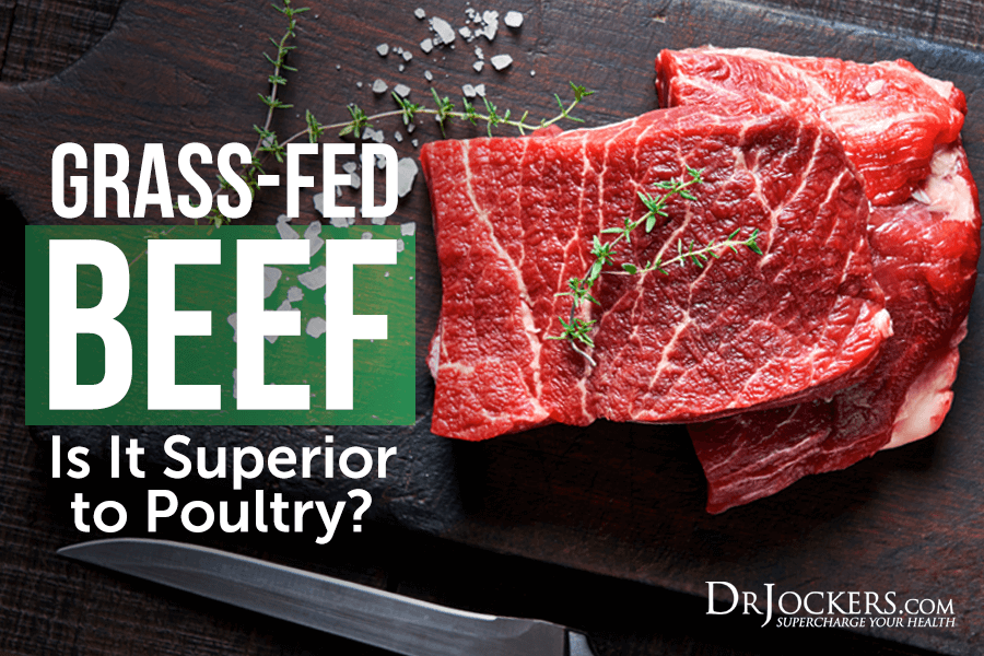 Grass Fed Beef, Grass-Fed Beef:  Is It Superior to Poultry?