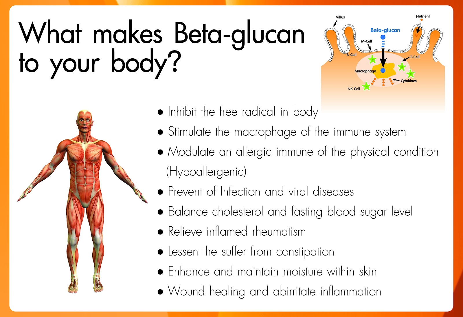 Unwanted side effects: Oat beta-glucan beats out plant sterols in cholesterol-lowering study