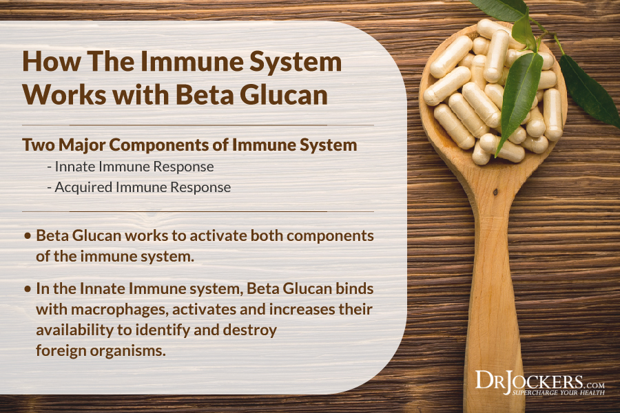 beta glucan, Beta Glucan and the Fight Against Cancer