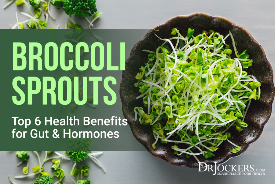 broccoli sprouts, Broccoli Sprouts: Top 6 Health Benefits for Gut & Hormones