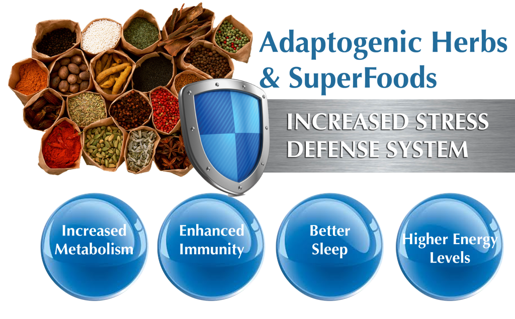 Adaptogenic-Herbs-and-SuperfoodDefense