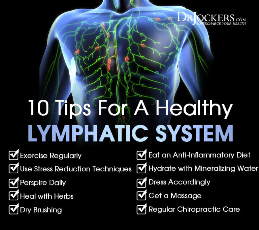 lymphatic system, 10 Ways to Improve Your Lymphatic System