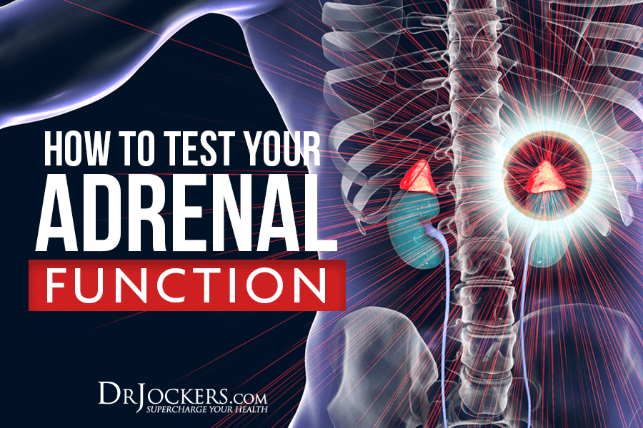adrenal function, How to Test Your Adrenal Function