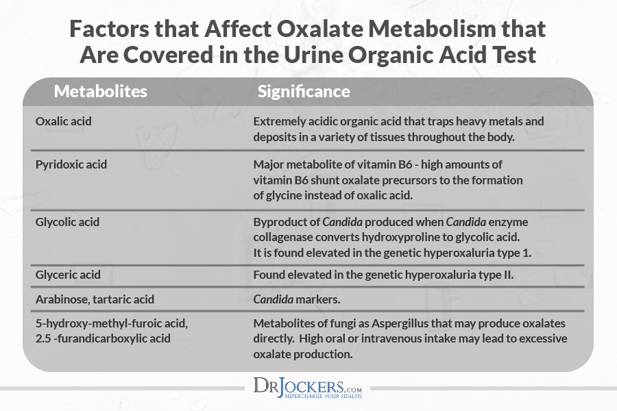 organic acids, Organic Acids Test: Analyzing this Functional Health Test