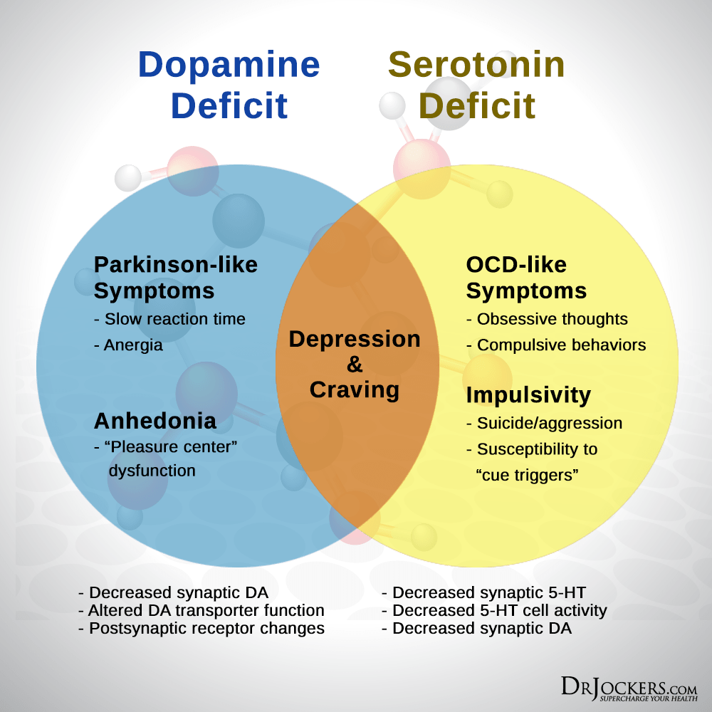 Boost Up Dopamine for Motivation and Focus - DrJockers com