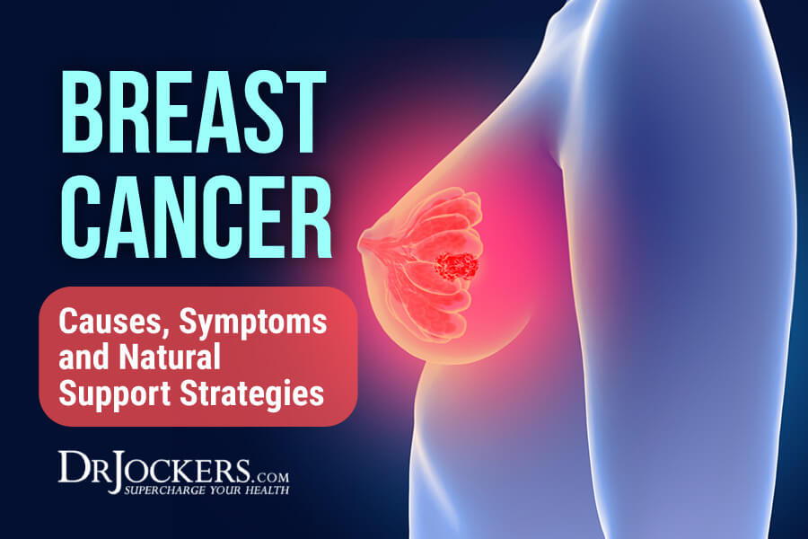 breast cancer, Breast Cancer:  Causes, Symptoms and Natural Support Strategies