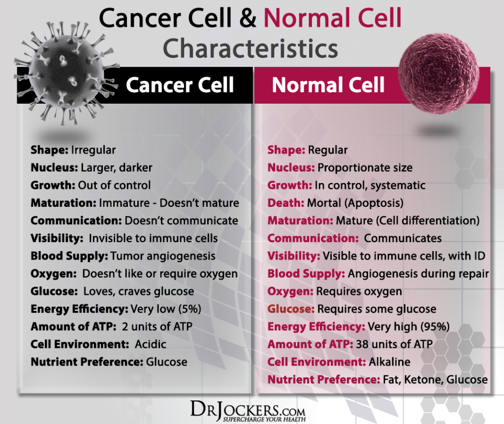 Special Nutrients that Turn off Cancer Cells - DrJockers com