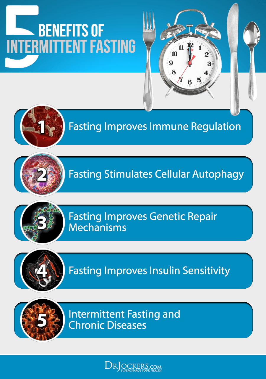 Intermittent Fasting, Intermittent Fasting Boosts Your Immune System
