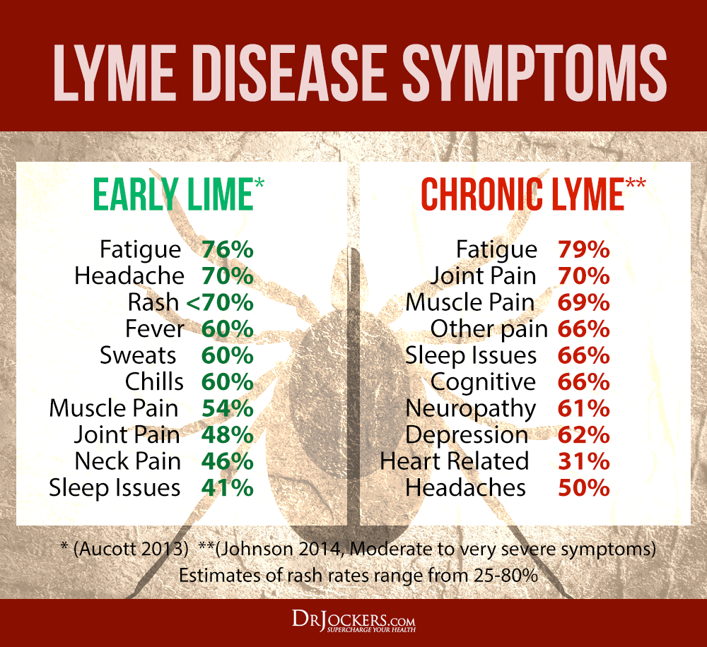 Natural Strategies to Overcome Lyme Disease - DrJockers.com
