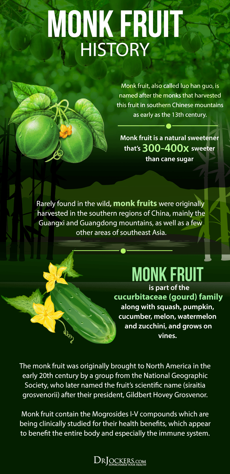 monk fruit, 8 Health Benefits of Monk Fruit