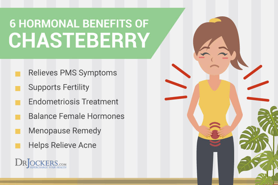 Chasteberry, 6 Benefits Of Chasteberry For PMS