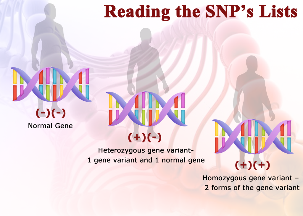 methylation, Understanding the Role of Methylation in Human Health