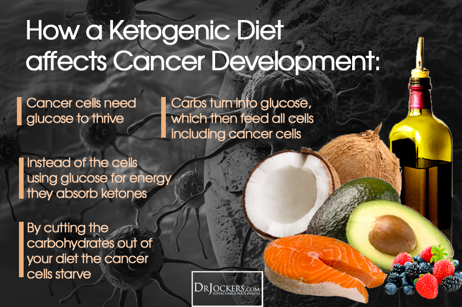 plant based, Plant Based Ketogenic Diet for Cancer