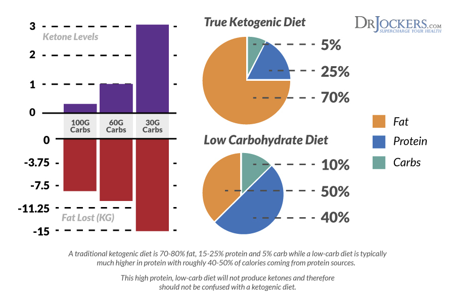 percentages for low carb diet