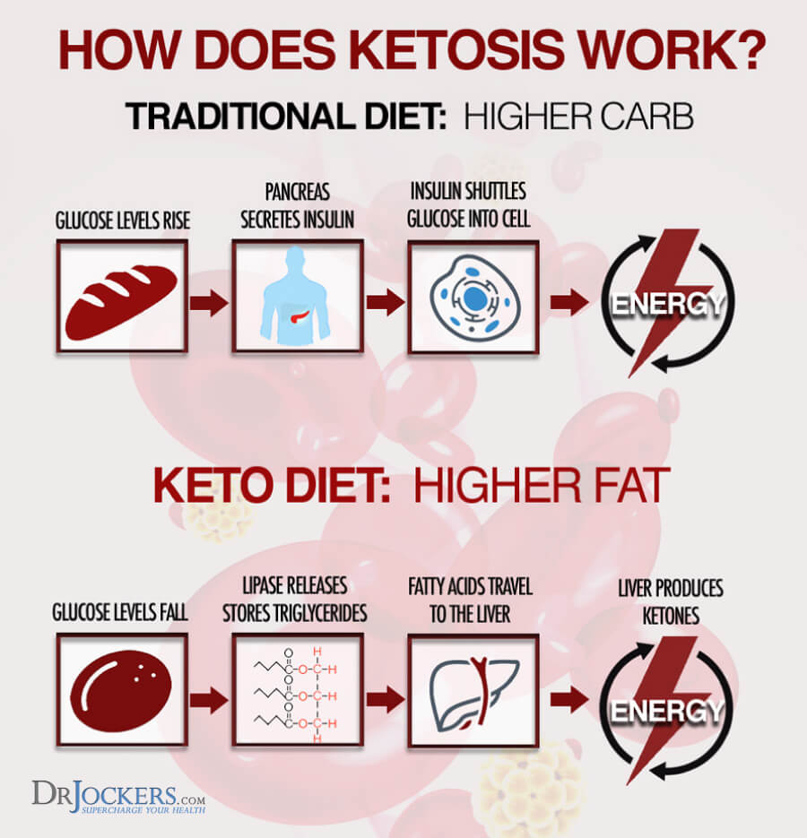 Low Carb, Keto Vs Low Carb: What's the Difference?