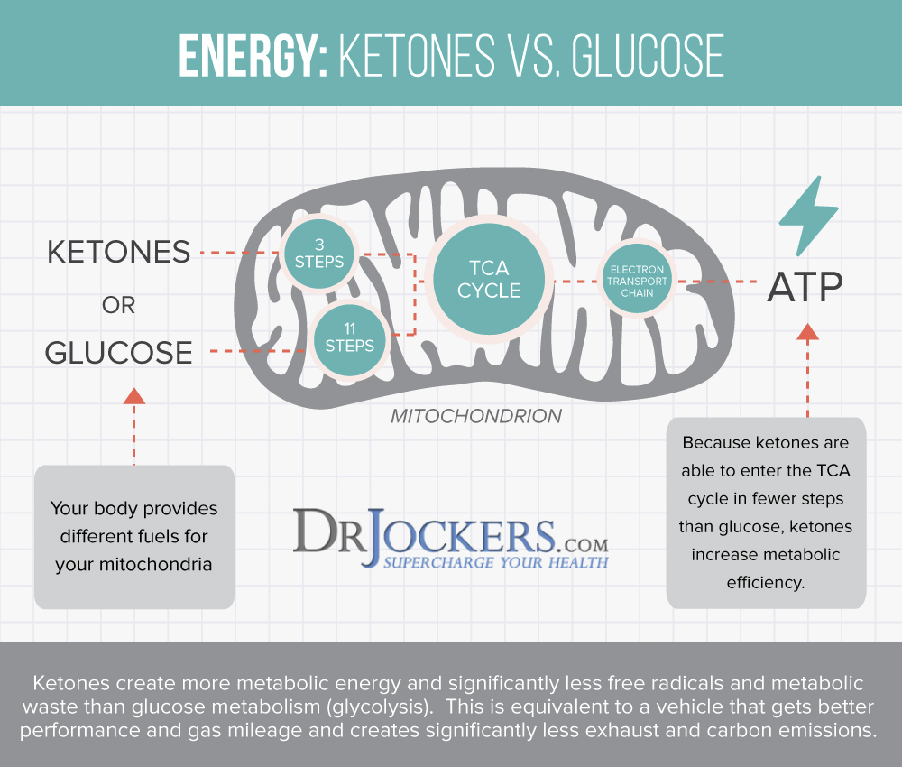 brain, 6 Ways A Ketogenic Diet Improves Brain Function