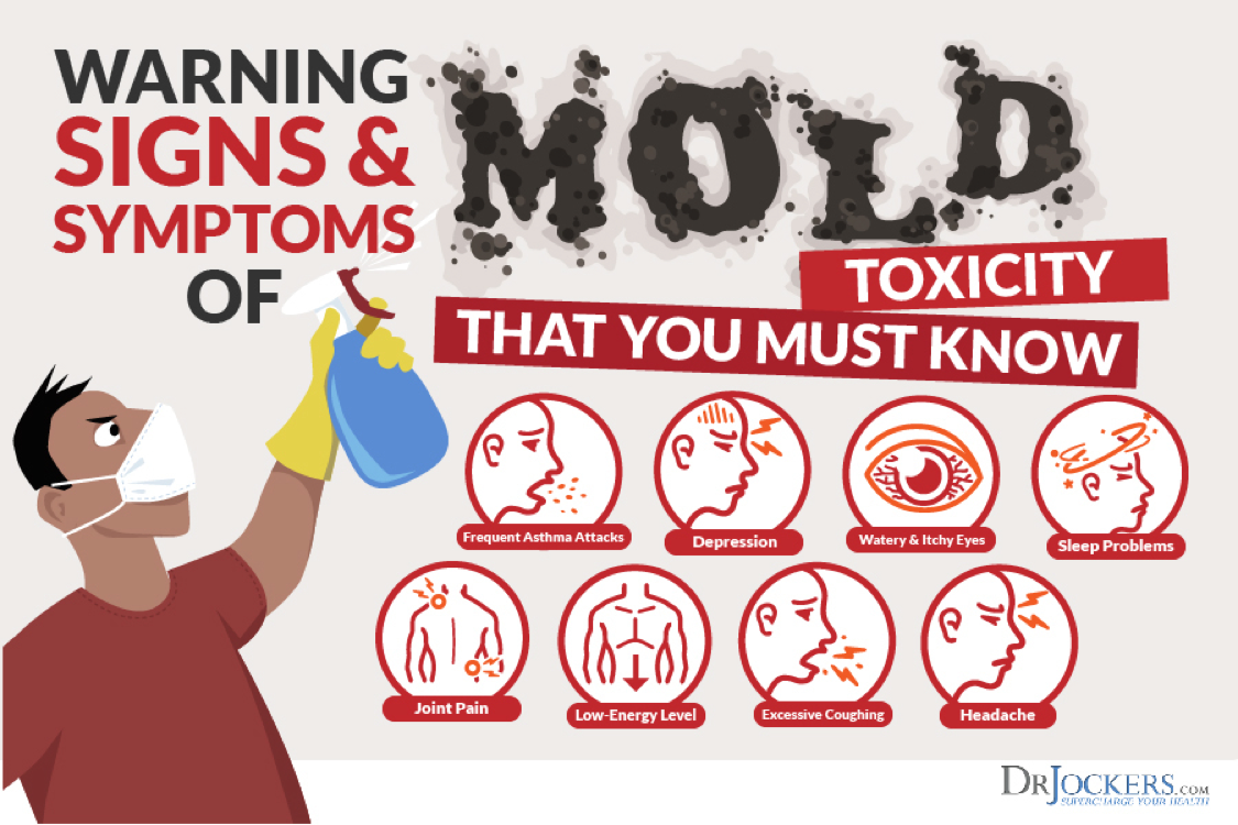Mold Exposure Signs Of Growth Health Risks