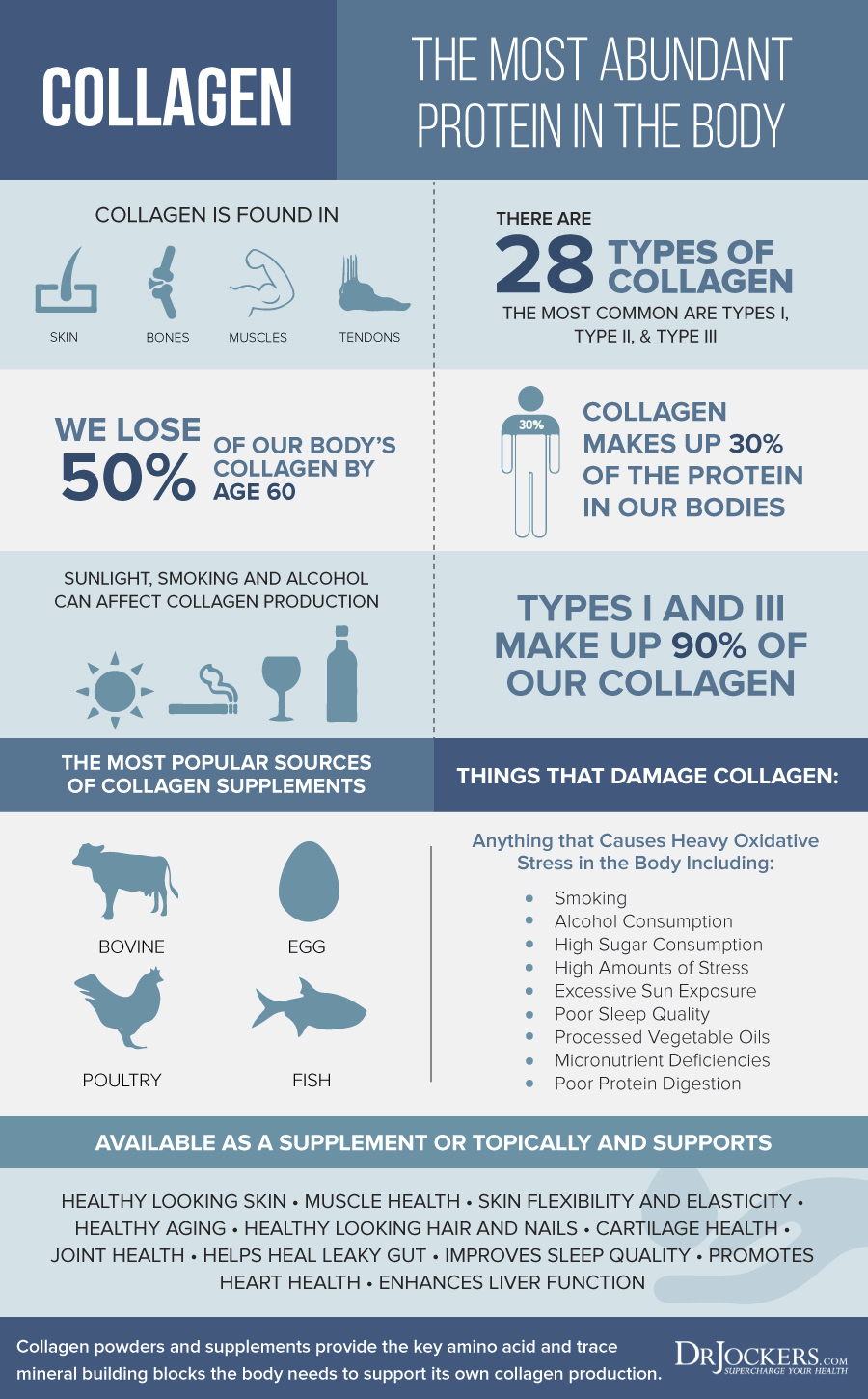 gelatin, Gelatin vs Collagen:  What is the Difference?