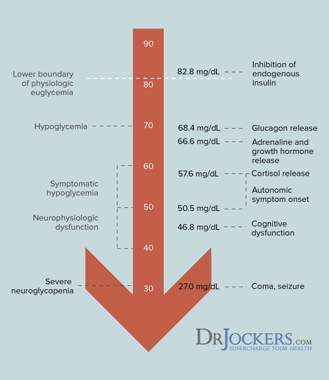 Hypoglycemia Causes and Natural Solutions - DrJockers com