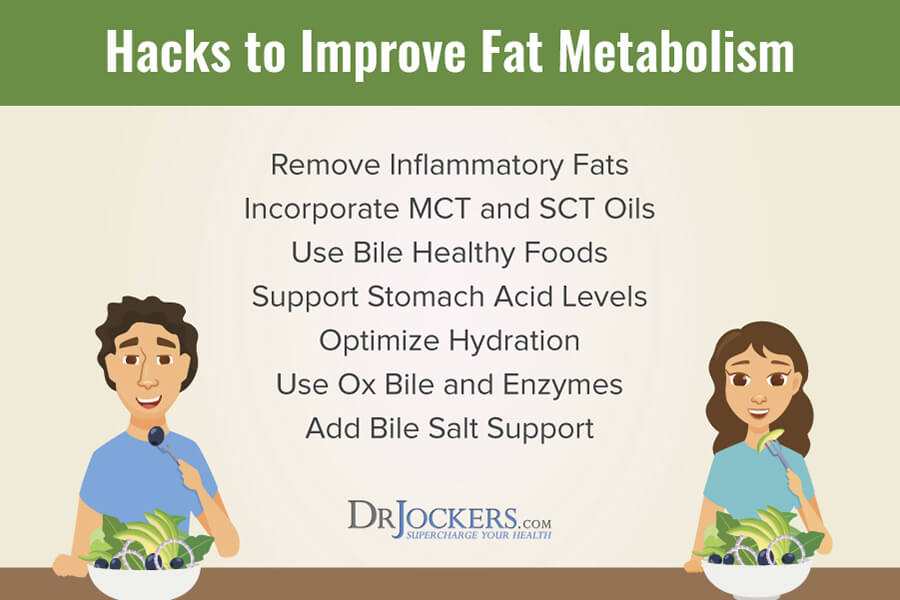 Trouble Digesting Fats, Trouble Digesting Fats? 8 Hacks to Improve Fat Metabolism