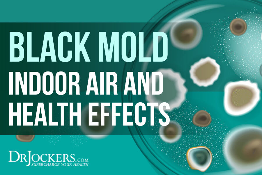 Black Mold, Black Mold: Indoor Air and Health Effects