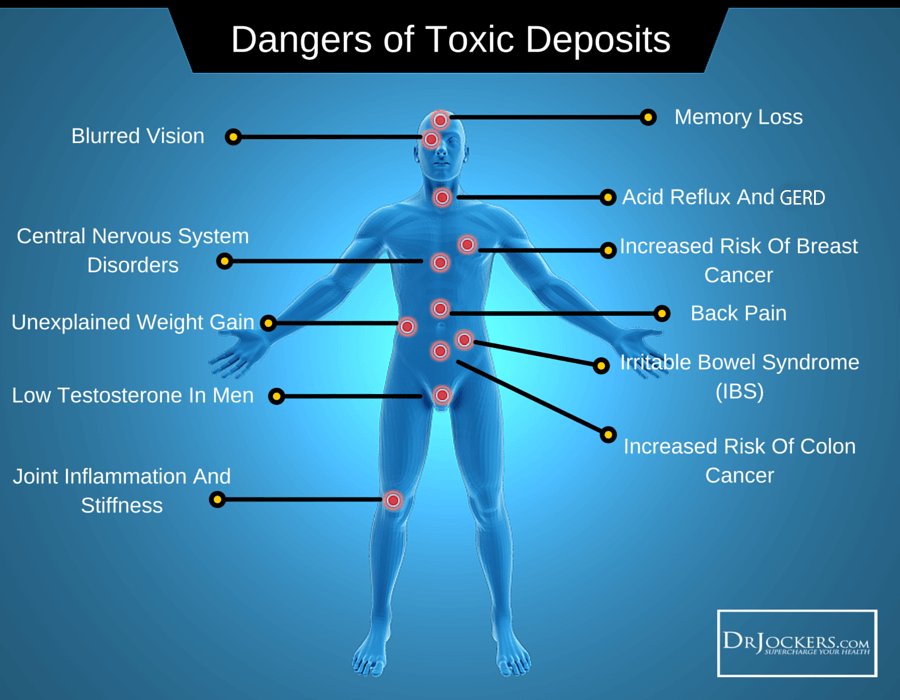 Detoxification strategies, Top 12 Daily Detoxification Strategies