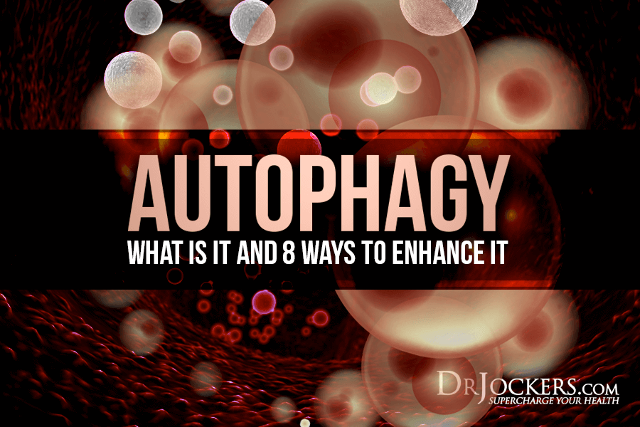 autophagy, Autophagy:  What is It and 8 Ways to Enhance It