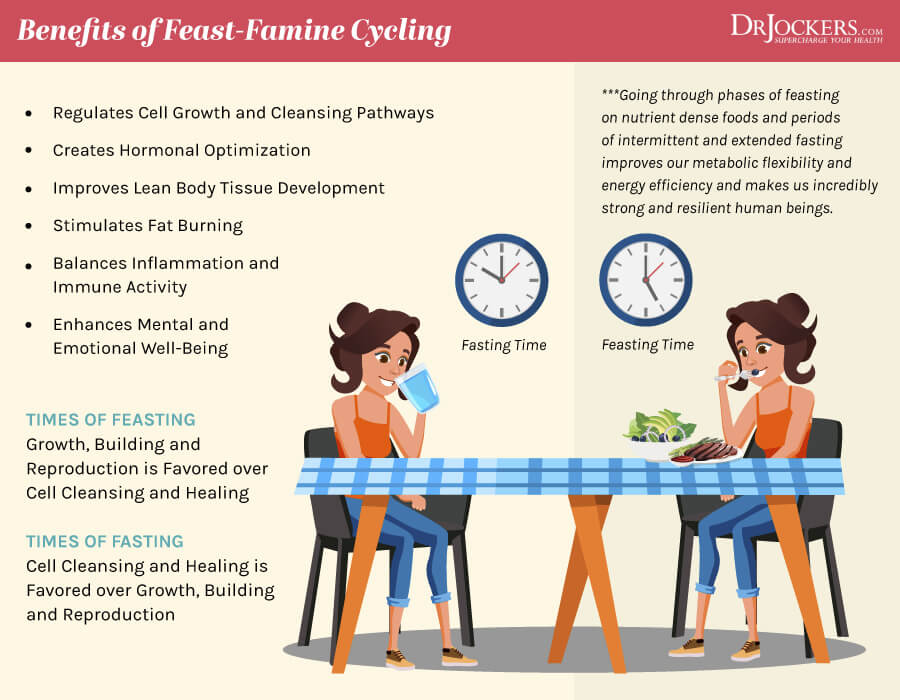 feast famine, Feast Famine Cycling: Autophagy, Cleansing and Muscle Growth