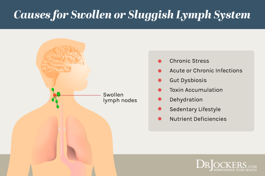 Lymphatic, Lymphatic Cleansing: 8 Ways to Clear Lymph Congestion