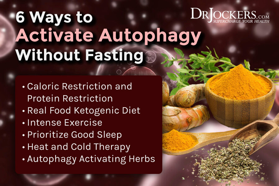 activate autophagy, 6 Ways To Activate Autophagy Without Fasting
