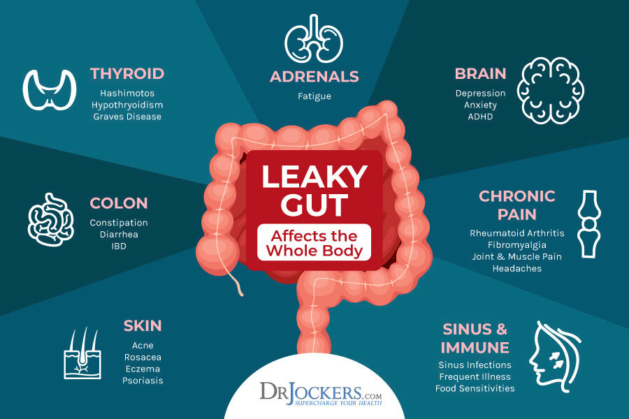 gut-brain, Is The Gut-Brain-Skin Axis to Blame For Anxiety and Acne?