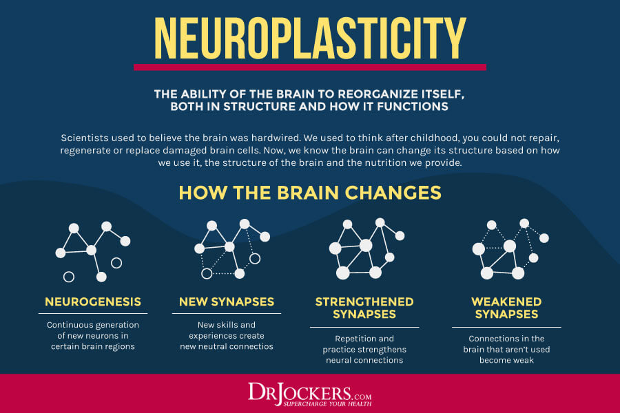 neurobics, Using Neurobics to Improve Your Brain