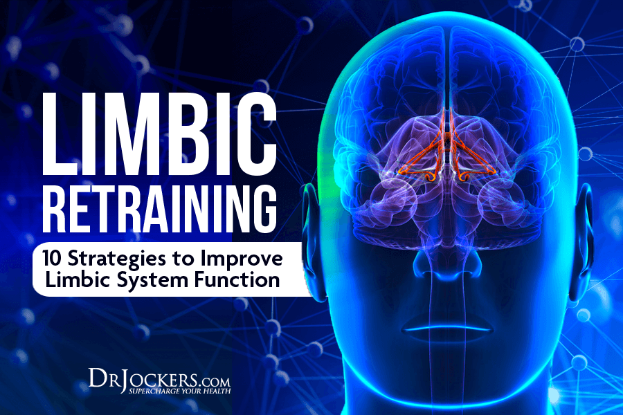 limbic, Limbic Retraining: 10 Strategies to Improve Limbic System Function