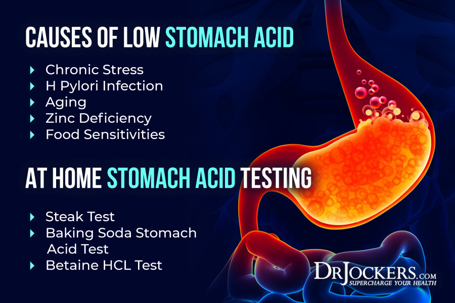 digestive health testing, Functional Digestive Health Testing to BioHack Your Gut!