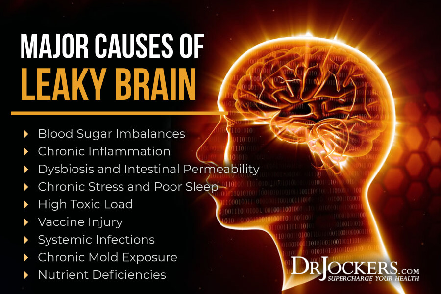 Leaky Brain, Leaky Brain Syndrome: Symptoms, Causes and Natural Solutions